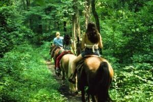 rutas a caballo por la playa y monte